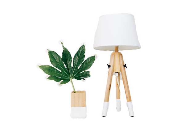 Lampe packservice