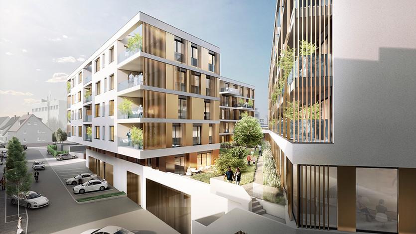 3D Architektur Visualisierung mit begrünten Innenhof