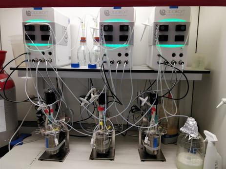 Bioreactor 3.jpg