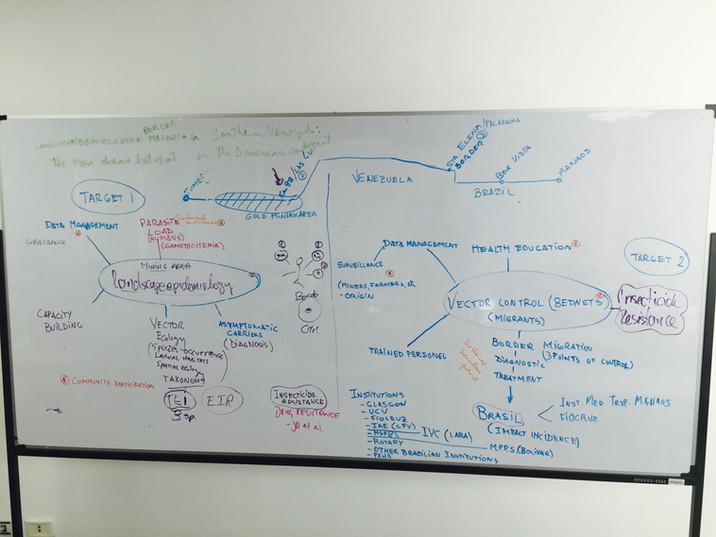 Cruzi Plan Board.jpg