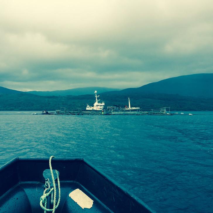 boat fieldwork.jpg