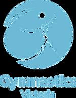 GV-Logo_edited_edited.png