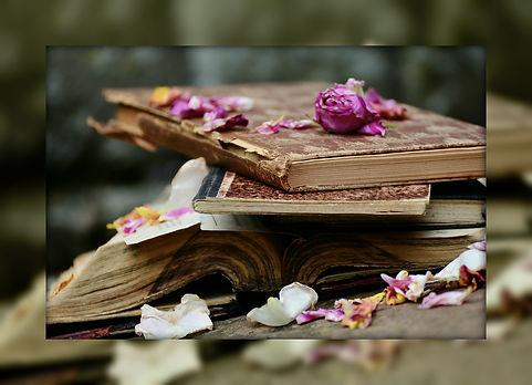 books-2447393_960_720.jpg