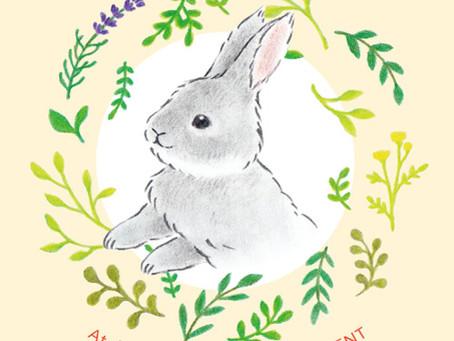 RabbitDEPARTMENT新宿店 単独フェア開催中