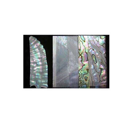 Mother of Pearl, Inlay Shell Strip for Raden and your crafts from Japan