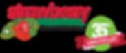 2019 SF 35 Logo.png