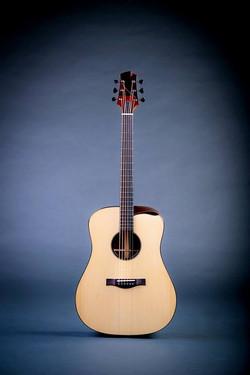 Isaac Jang Guitar     Dreadnought