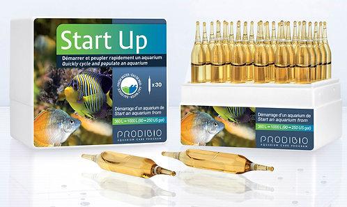 Start Up 30 vials