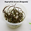 Thumbnail: Hygrophila lancea 'Araguaia'