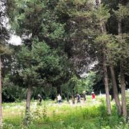 숲산책프로그램.jpg