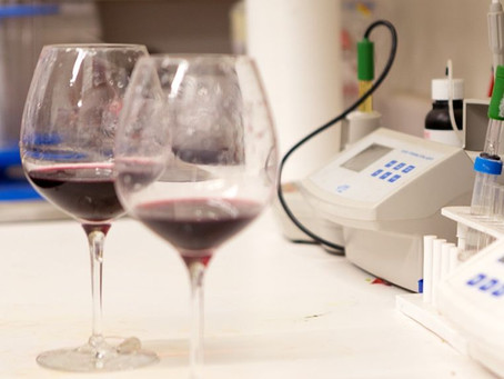 Technical requirements for canning wine