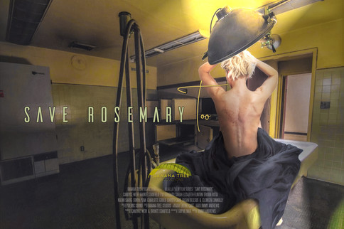 SAVE ROSEMARY TOO OFFICIAL BILLBOARD.jpg