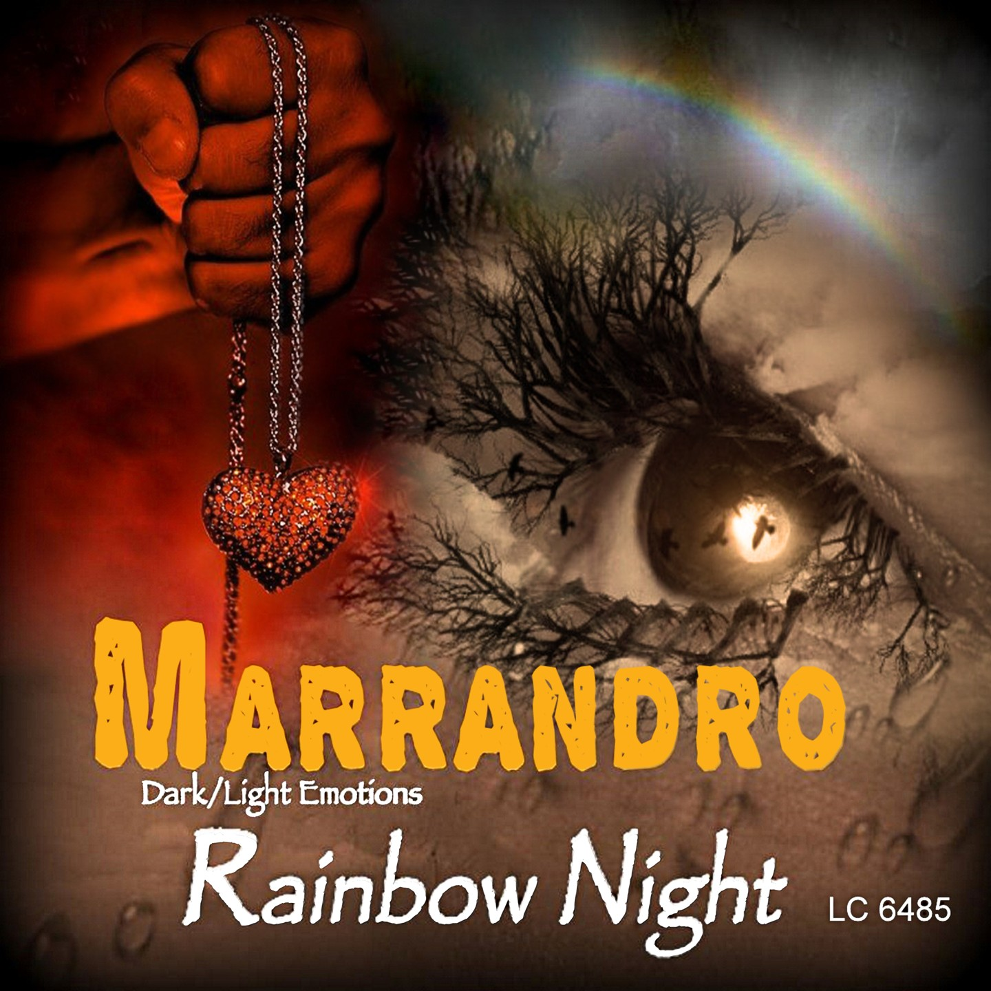 "MARRANDRO ""Rainbow Night"""