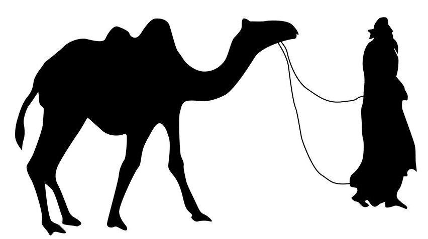 camelsilhouetteblack.jpg