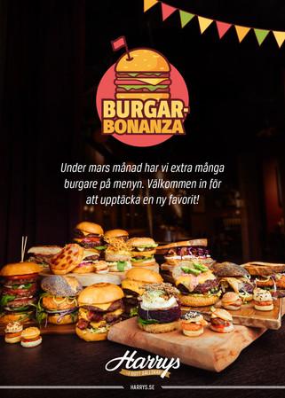 Kampanjmaterial – Burgarbonanza