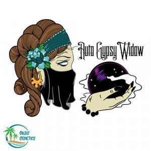 Auto Gypsy Widow Feminized - 4 Seeds