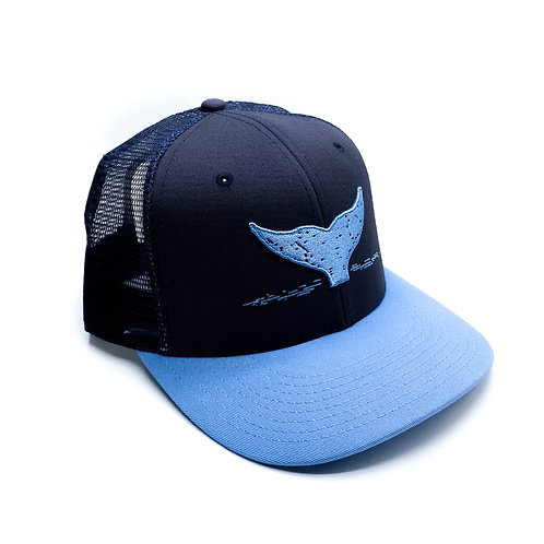 Navy and Carolina Blue Hat