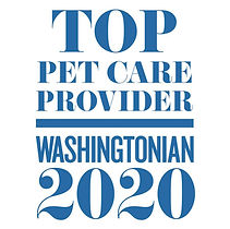 washingtonian winner 2020.jpg
