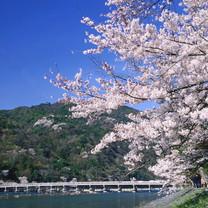 Arashiyama_cherry blossoms【pl_ID1272033】