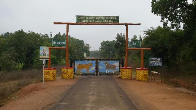 umred-karhandla-wildlife.jpg