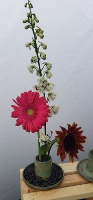 Ikebana Flower Display