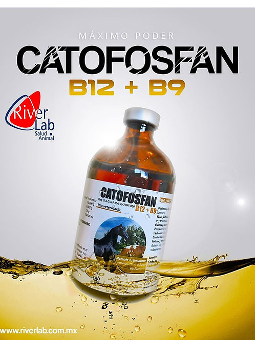 CATOSFAN B12 B9 20ML