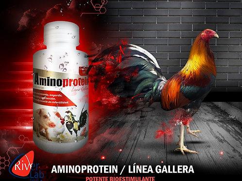 AMINO PROTEIN 100ML