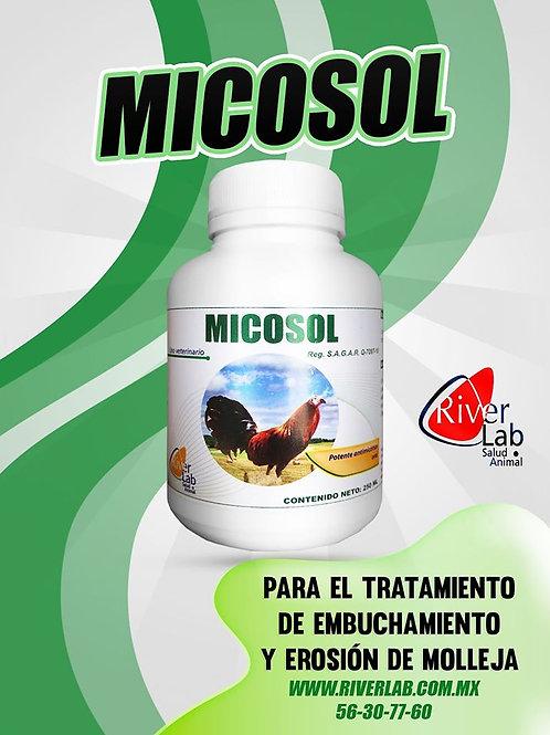 MICOSOL 100ML