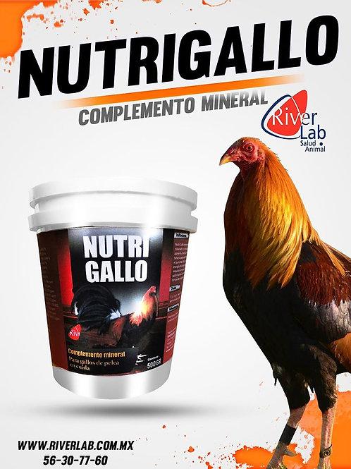 NUTRI GALLO