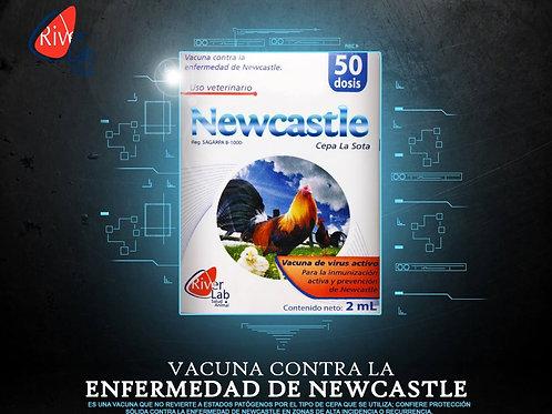NEWCASTLE 50 DOSIS