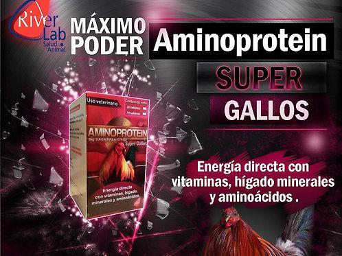 AMINO PROTEIN  70 TABLETAS