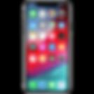 iphonex_2x[1].png