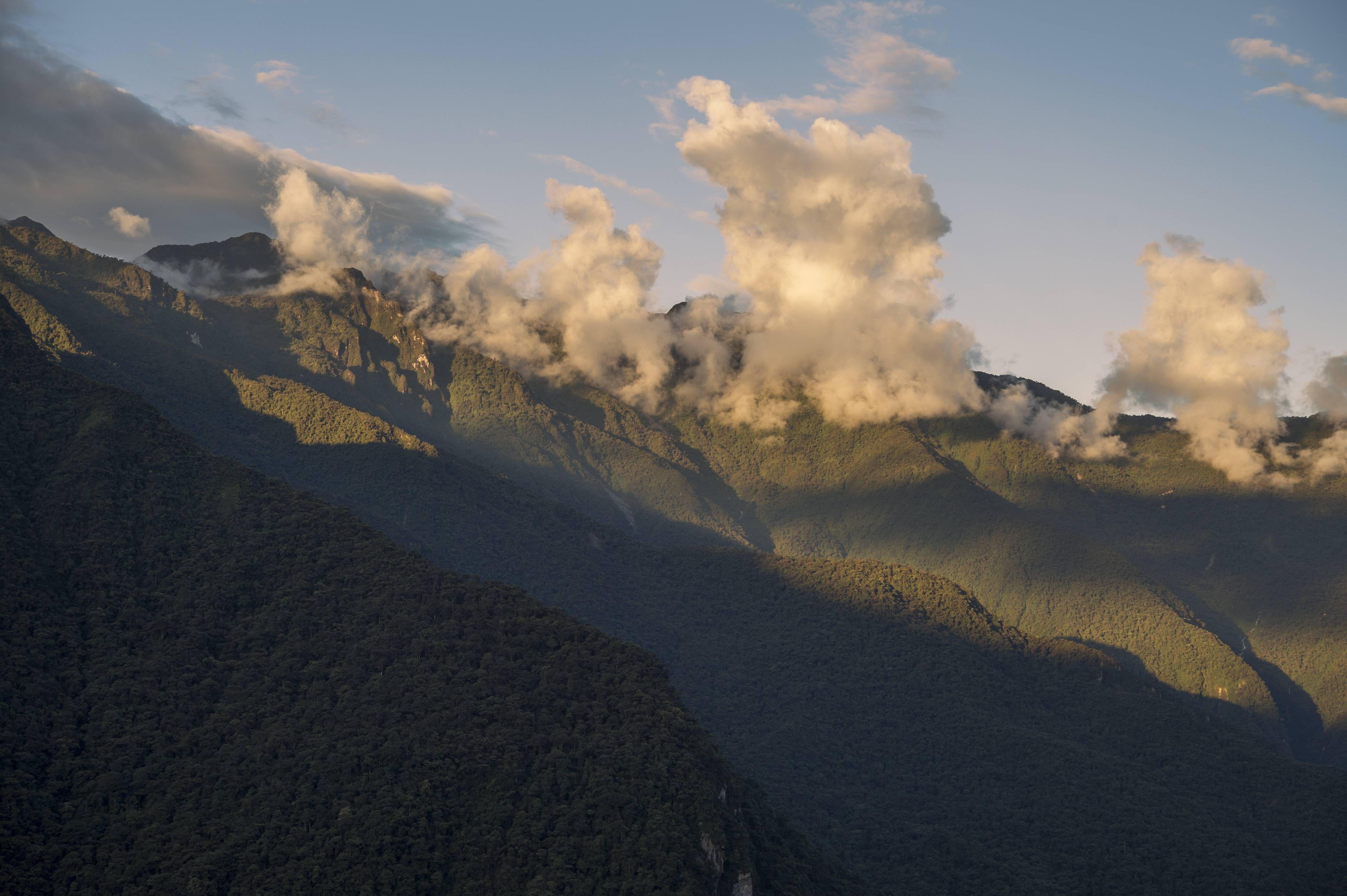 Paisaje del bosque montano en la estribación oriental del CCSP.