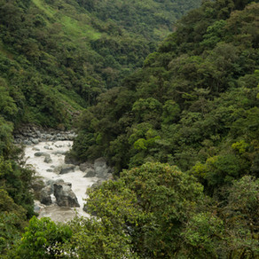 Se crean tres Áreas de Conservación en el cantón Santiago