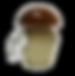 funghi-crema_160x160.png