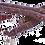 Thumbnail: Salsiccia dolce di suino nero da 430 a 450 gr. circa