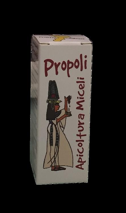 Propoli spray 20 ml.