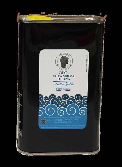 Olio Extra Vergine d'Oliva - latta 0,5 l