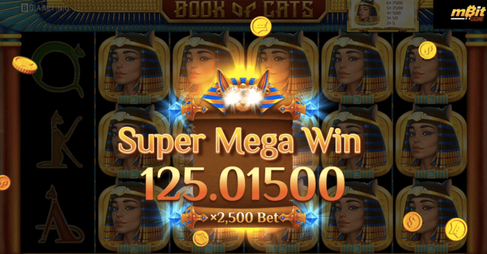 Over $225K Won in Just 3 Minutes: Book of Cats by BGaming