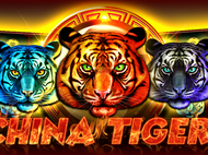 Chinese Tigers