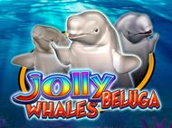 Jolly Beluga Whales