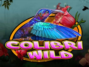Colibri Wild