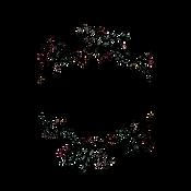 TRANSPARENT_ReedyKay+Associates Logo.png