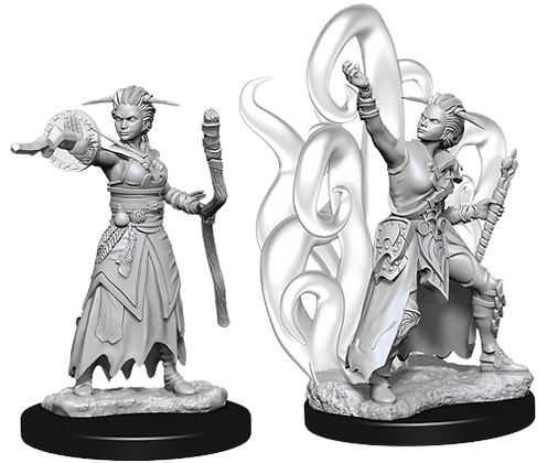 Human Warlock (Female) - Nolzur's Marvelous Miniatures