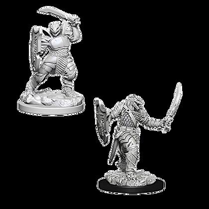 Dragonborn Paladin (Female) - Nolzur's Marvelous Miniatures