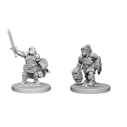 Dwarf Paladin (Female) - Nolzur's Marvelous Miniatures