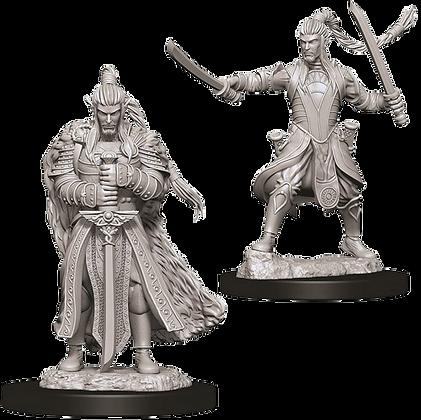 Elf Paladin (Male) - Nolzur's Marvelous Miniatures
