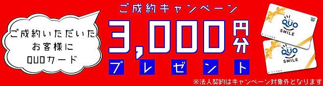 シロアリ駆除ご成約でQUOカード3,000円プレゼント