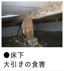 白蟻による床下大引の食害画像