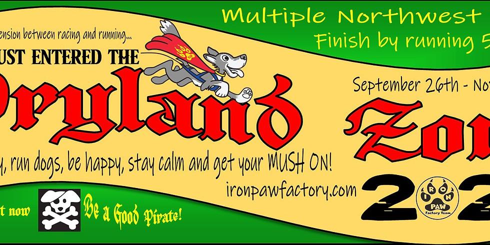 Official Run - Iron Paws Kick off